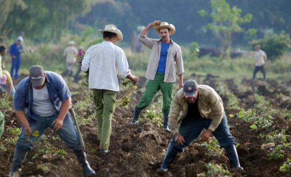 Socialism Makes the Difference as Cuba Confronts Climate Change