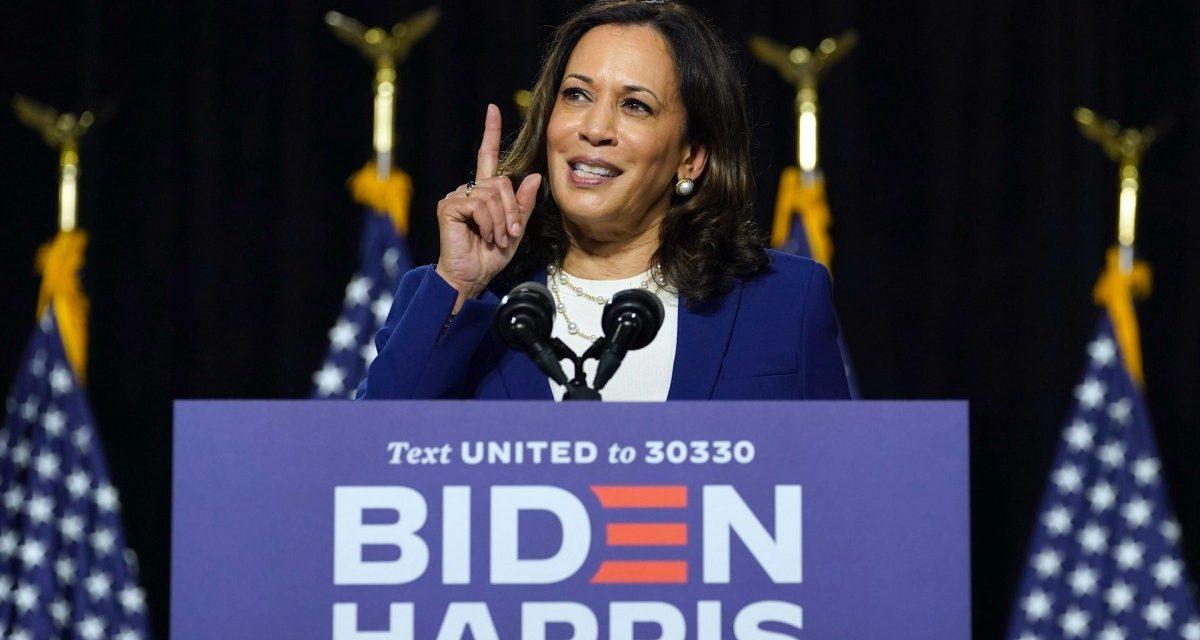 As Kamala Harris Joins Biden Ticket, Wall Street Sighs in Relief
