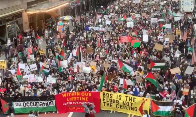 U.S. Unions Are Voicing Unprecedented Support for Palestine