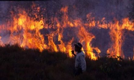 WFTU: Climate Change and Hypocrisy